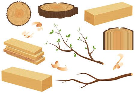 Collection of wooden logs, tree branches, lumbers, timber sawn into rough planks isolated on white background.Stacked lumber material, trunk twig and firewood logging twigs.