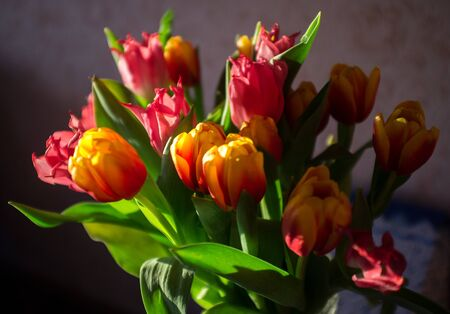 bouquet of tulips in the groove