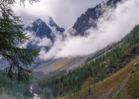 Mountain landscape. Mountain river in the Altai Republic. Stock Photo