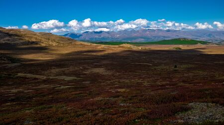 Mountain plateau in clear weather in the Altai Republic. Stockfoto