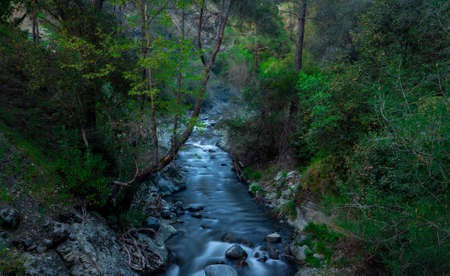 Rapid flow of the river in the mountains of the island of Cyprus at dusk. 免版税图像