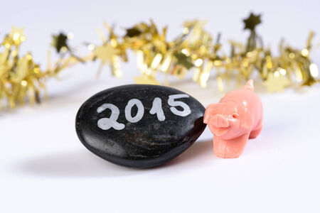 Good Luck Pig, New Year 2015 photo