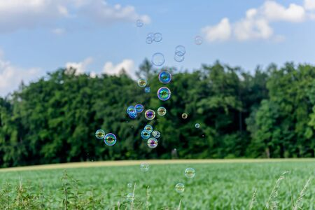 corn island: A bunch of magical shining soap bubbles flying over a corn field in front of a wood. Some bubbles are mysteriously reflecting a single house with trees like an island.