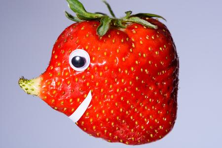pez globo: fresa divertido con la nariz crecida natural como una cara. Tiene una forma �nica y se parece a un pez globo, elefante o lunar. Foto de archivo