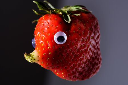blowfish: Funny strawberry with natural grown nose like a face. It has a unique form and looks like a blowfish, elephant or mole.