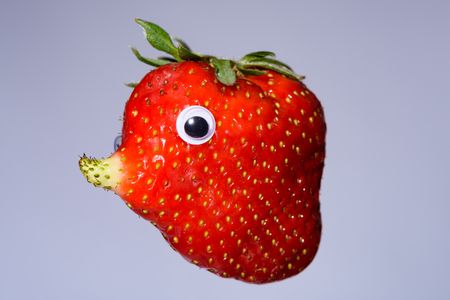 pez globo: Funny strawberry with natural grown nose like a face. It has a unique form and looks like a blowfish, elephant or mole.