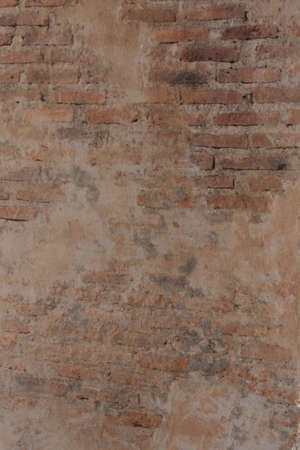 go for: Brown brick wall An old traces that are interesting. Go for a backdrop.