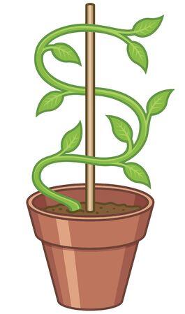 geld: Money Tree