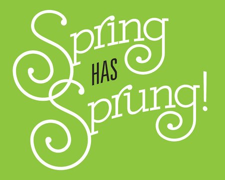 Spring Has Sprung vector design. Fun custom drawn text with fancy swash letters and bold outline on green background.