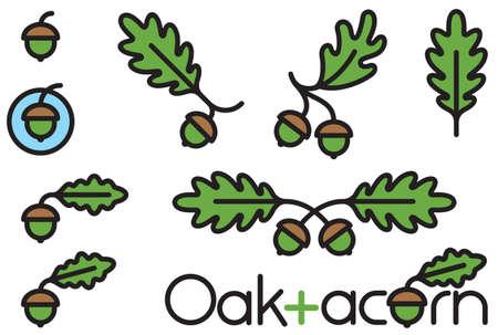 Set of 9 acorn and oak leaf design elements. Decorative vector nature illustrations with bold outline.