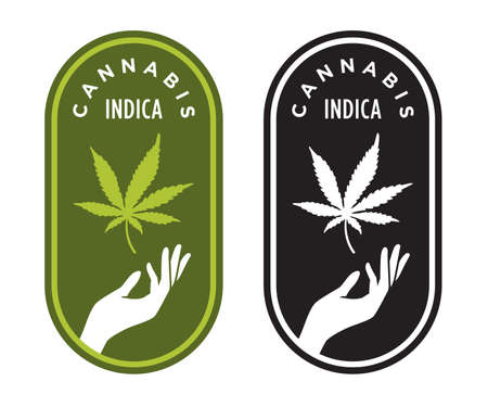 Cannabis Indica vector logo or badge. Elegant marijuana design with hand and cannabis leaf.