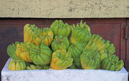citron: Buddhas hand fruit, fingered citron fruit, Citrus medica in vietnam