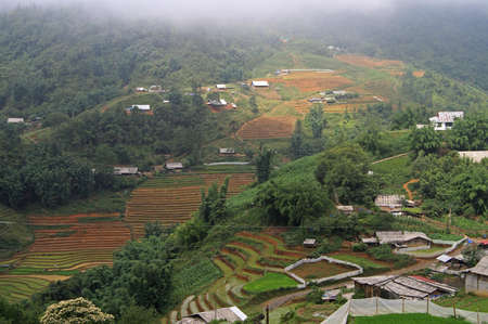 nearly: rice fields nearly Sa Pa town, Vietnam