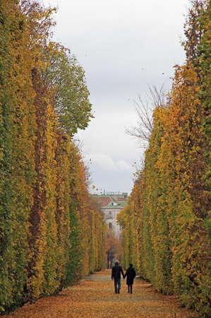 cutted: Vienna, Austria - November 7, 2015: people are walking in park of Vienna, Austria