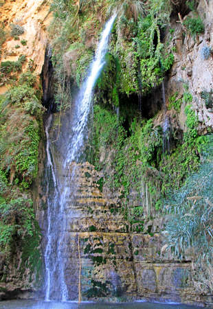 Ein Gedi - Nature Reserve and National Park
