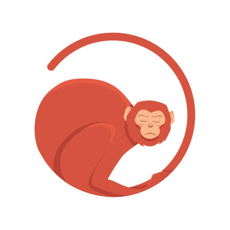 long tail: Vector illustration of a red monkey. Monkey in a circle with a long tail in 2016.