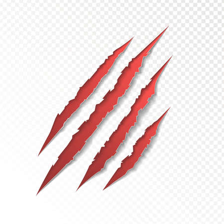 isolated: claws scratching animal vector illustration.
