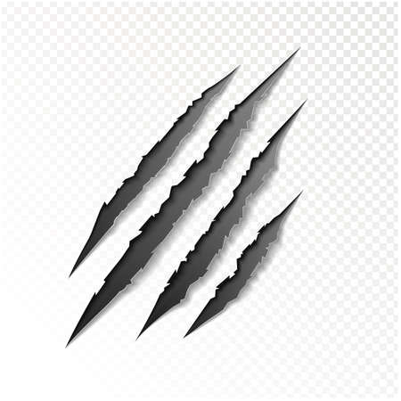 laceration: claws scratching animal vector illustration.