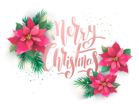 Christmas poinsettia vector design card