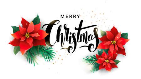 ポインセチアとモミの枝のクリスマス デザイン