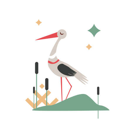 Vector Illustration of cartoon stork bird isolated on white background Иллюстрация