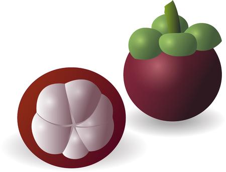mangosteen: Fresh Mangosteen or Mangiest