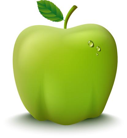 manzana caricatura: Ilustraci�n fresca de manzana verde