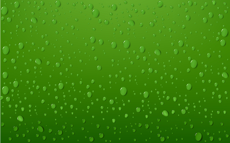 quench: Water Drop On Green Background