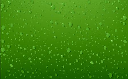 brisk: Water Drop On Green Background
