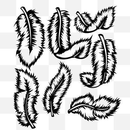 fondo transparente: Plumas tatuaje conjunto en el fondo transparente
