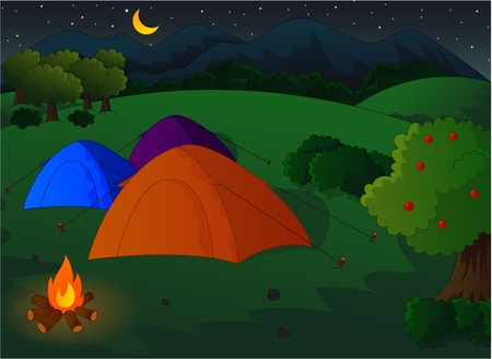 fire wood: Camping in the meadow at night Illustration