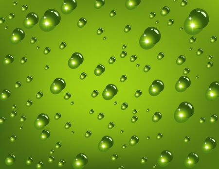 drops of water: Water drops on green background