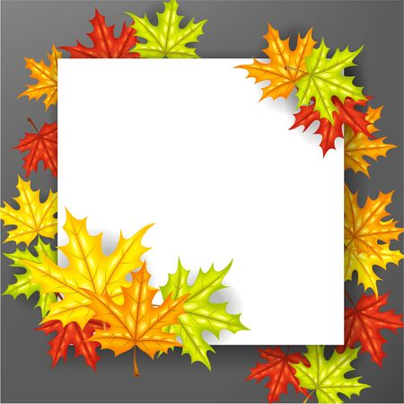 autumn leafs: Autumn leafs background with paper sign