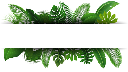 Sign with text space of Tropical Leaves. Suitable for nature concept, vacation, and summer holiday. Vector Illustration Reklamní fotografie - 73462869