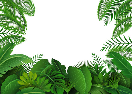 Background of Tropical Leaves. Suitable for nature concept, vacation, and summer holiday. Vector Illustration Illustration