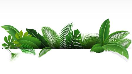 적합: Sign with text space of Tropical Leaves. Suitable for nature concept, vacation, and summer holiday. Vector Illustration