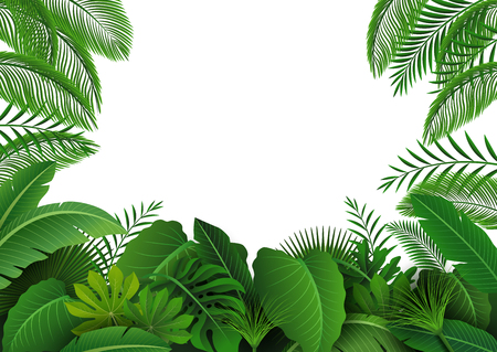 areca: Background of Tropical Leaves. Suitable for nature concept, vacation, and summer holiday. Vector Illustration Illustration