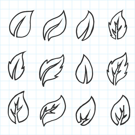 Artistic collection of hand drawn leaves set. Isolated and real pen sketch. Vector Illustration