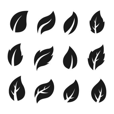 Artistic collection of black leaves set. Vector Illustration 向量圖像