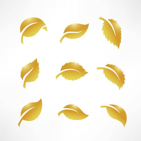 Artistic collection of gold leaves set. Vector Illustration