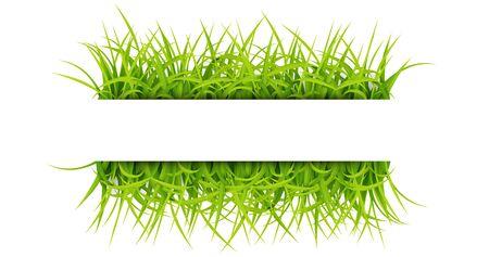 Sign with text space of Young Grass. Suitable for nature concept, spring, and summer holiday. Vector Illustration