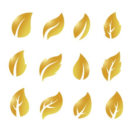 Artistic collection of gold leaves set. Vector Illustration 版權商用圖片 - 145942507