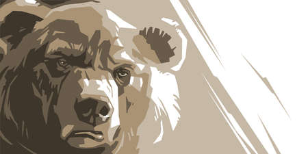 Angry bear on a white background abstract
