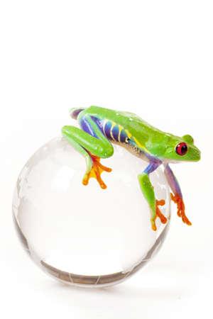 eyed: Frog on Globe