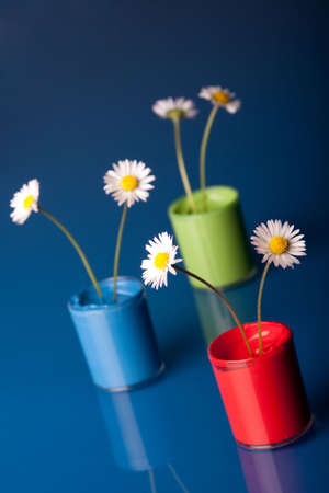 Paint buckets with daisys photo