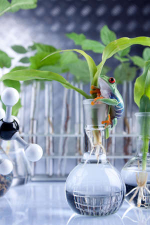 Las plantas y de laboratorio