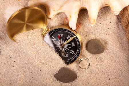 Hot sands and their treasures photo