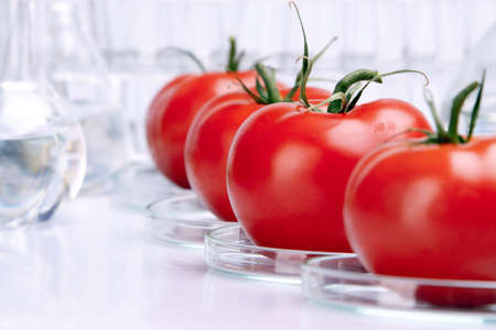 wijzigen: Geneticly gewijzigd Fruits  Stockfoto