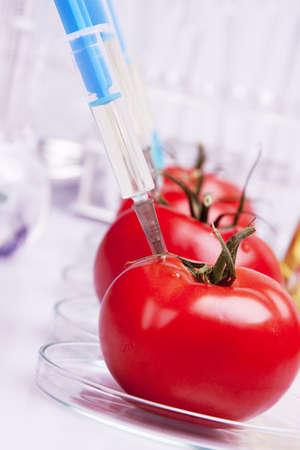 modificar: Geneticly modificaci�n de frutas  Foto de archivo