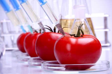 riesgo quimico: Geneticly modificación de frutas  Foto de archivo